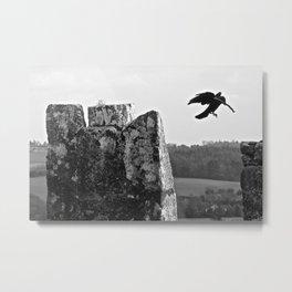 nesting on blarney Metal Print