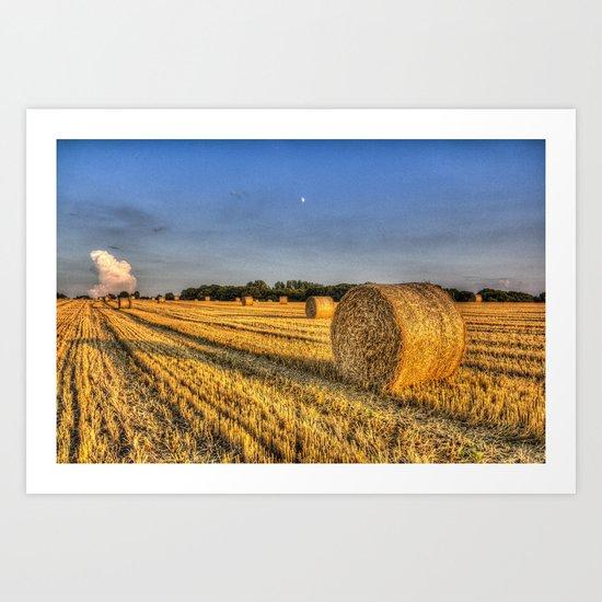 Summer evening farm Art Print