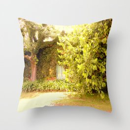 The Garden Door Throw Pillow