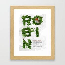 Birds of Britain - Robin Framed Art Print