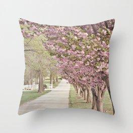 A Dreamy Journey Throw Pillow