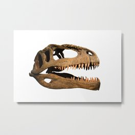 The skull of dinosaur Metal Print