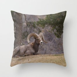 Leader Throw Pillow