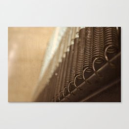 Springs Canvas Print