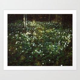 Where Love Grows Art Print