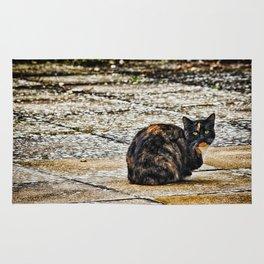 Tortoiseshell Cat Rug