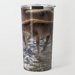 Salt River Mare and Her Colt, No. 2 Travel Mug