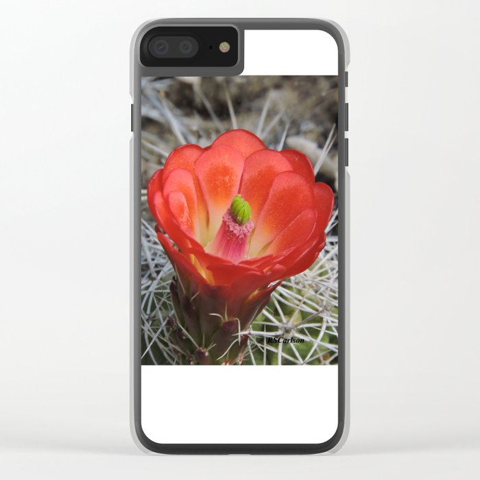 Red Blossom on a Hedgehog Cactus Clear iPhone Case