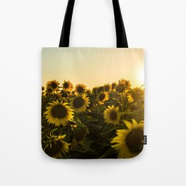 Sunflower field photo filter sun flowers sunflowers Tote Bag