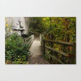 Foliage Bridge Canvas Print