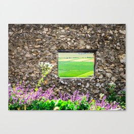 Window on a Transylvanian Meadow Canvas Print