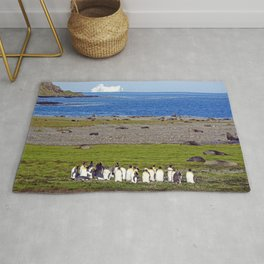 King Penguins on the beach with an Iceberg behind Rug
