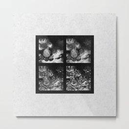 Phases Metal Print