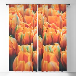 Tulips Close Up Blackout Curtain
