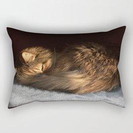 Curled Rectangular Pillow