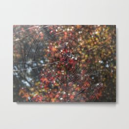Realm of the Orb Weaver Metal Print