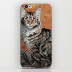 Maine coon P048 iPhone & iPod Skin