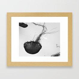 Jellyfish Silhouette  Framed Art Print