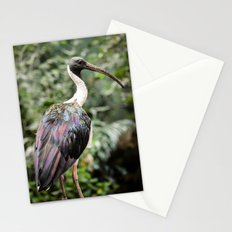Bird of Colors Stationery Cards