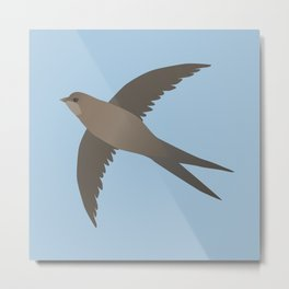 Common swift flying in the air vector Metal Print