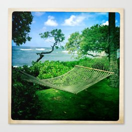 Chillax Canvas Print