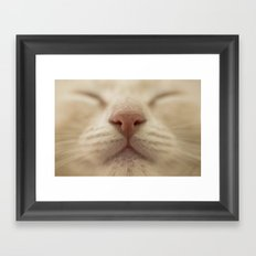 Le sage Framed Art Print