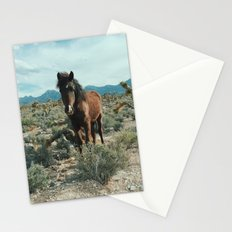 Nevada Desert Horse Stationery Cards
