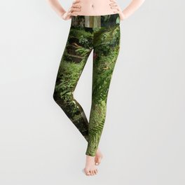 The Secret Garden Leggings