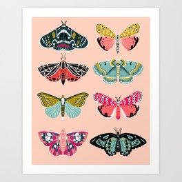 Lepidoptery No. 1 by Andrea Lauren  Art Print