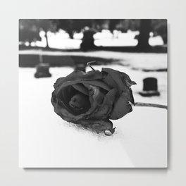 Beauty frozen Metal Print