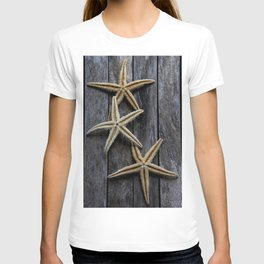 Starfishes in wooden T-shirt