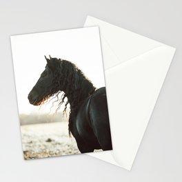 Klaas Stationery Cards