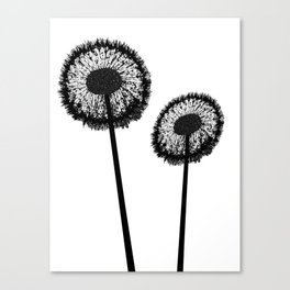 Black Dandelions Canvas Print