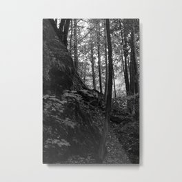 Forest at the Petersberg Flintsbach, black and white Metal Print