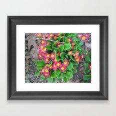 park pic 045 Framed Art Print
