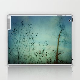 Moody Blues Laptop & iPad Skin