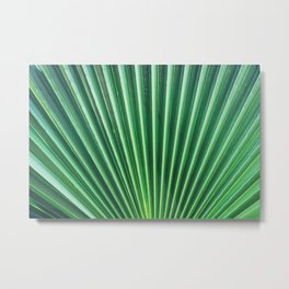 Palm Leave Rays Metal Print