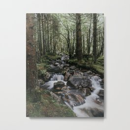 The Fairytale Forest - Landscape and Nature Photography Metal Print