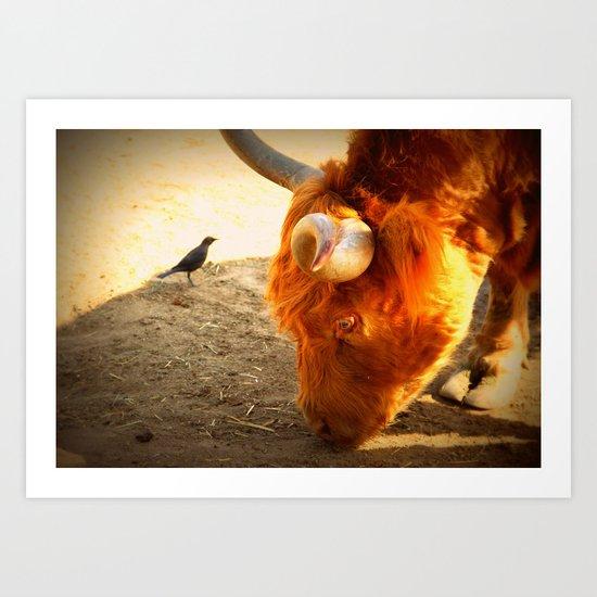 the bull and the bird Art Print