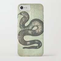 snake iPhone & iPod Cases featuring Snake by LoRo  Art & Pictures