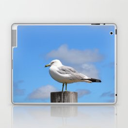Seagull Bird Beach Art - Sitting Pretty - Sharon Cummings Laptop & iPad Skin