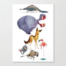 African animals 3 Canvas Print