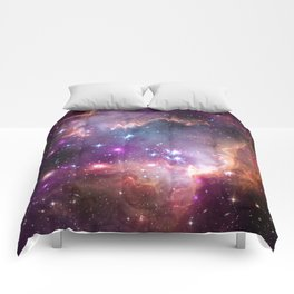 Under the Wing of the Small Magellanic Cloud Comforters