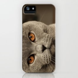 Diesel, the cat - (close up)  iPhone Case