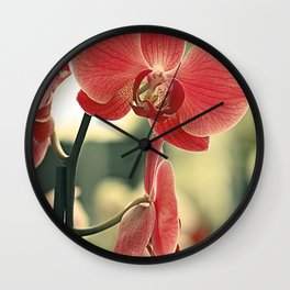 The mystery of orchid (15) Wall Clock