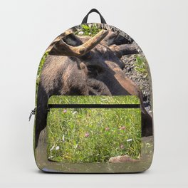 Moose standing in the water Backpack
