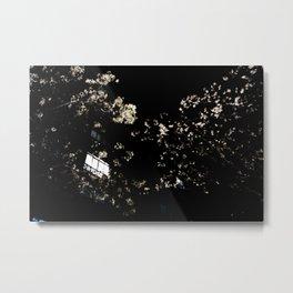 Luciérnagas. Metal Print
