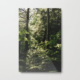 Cramped Forest Metal Print