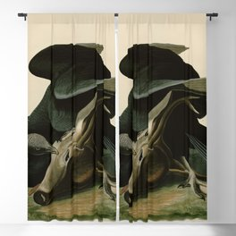 106 Black Vulture or Carrion Crow Blackout Curtain