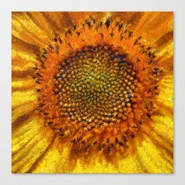 Sunflower and Seeds In Van Gogh Style Canvas Print